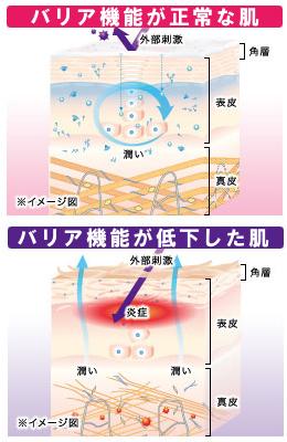 乾燥肌や敏感肌を防ぐ肌のバリア機能